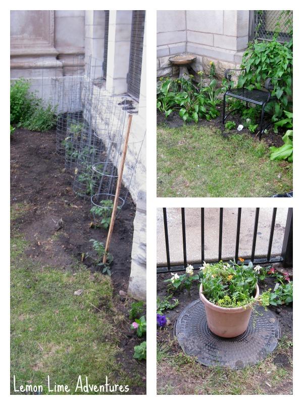 Creating a Preschool Garden