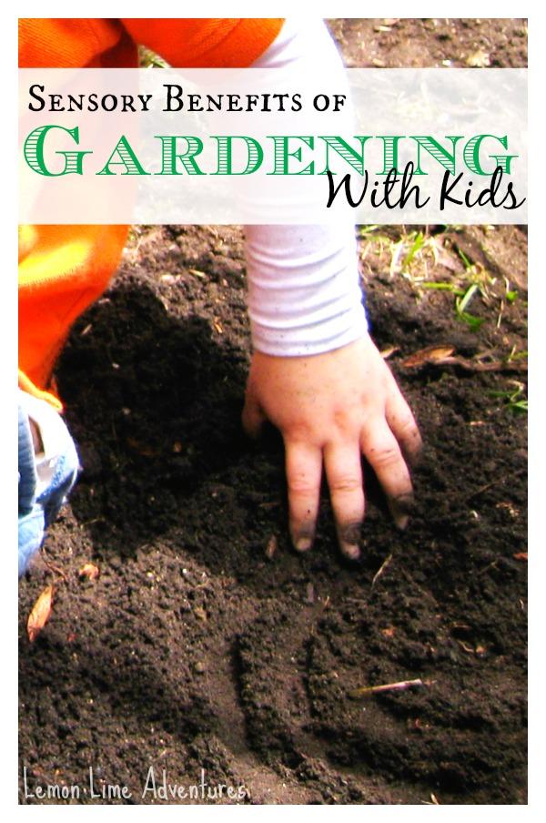 Sensory Benefits of Gardening with kids