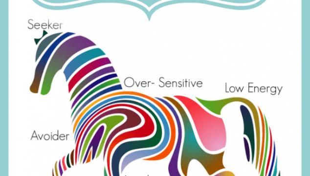 Sensory Processing Resources
