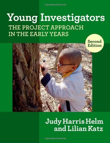 Project Approach: Young Investigators