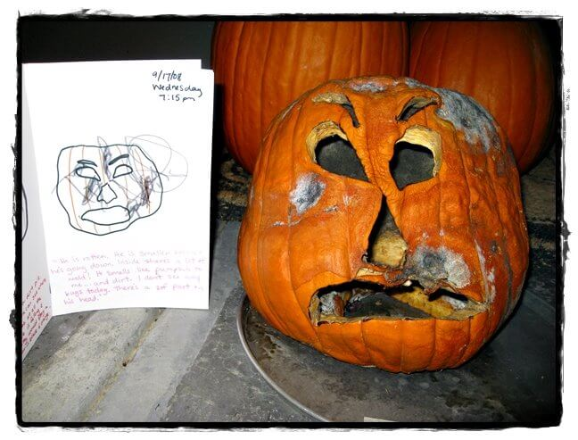 Rotting Pumpkin Science