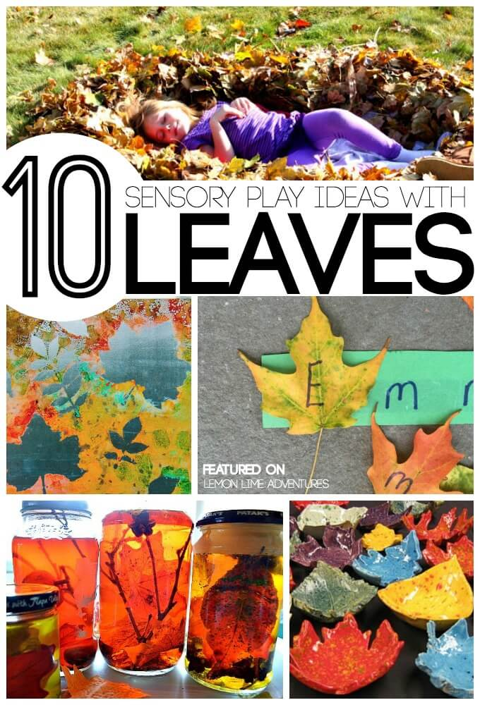 Fall Sensory Play with Leaves