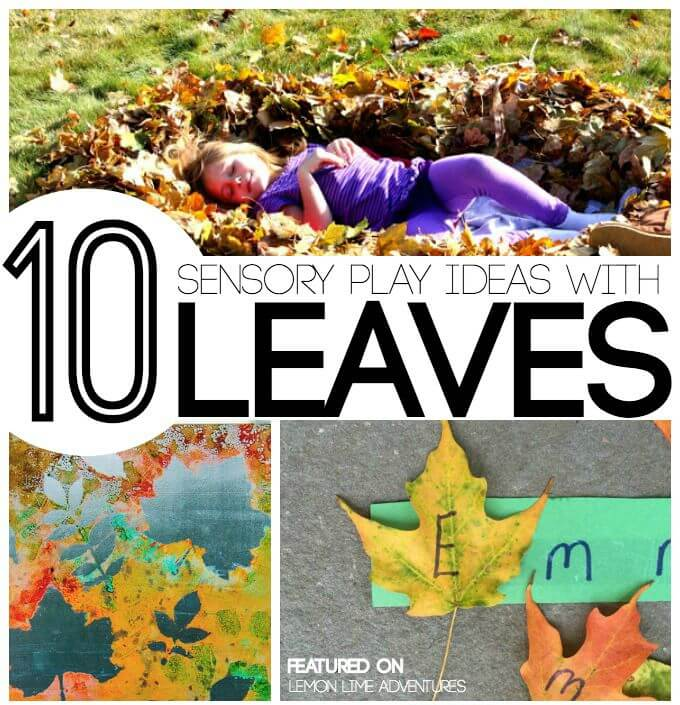 Fall-Sensory-Play-with-Leaves
