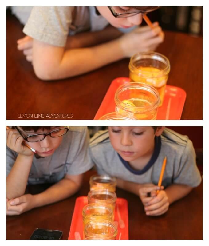 Observing peeps experiments