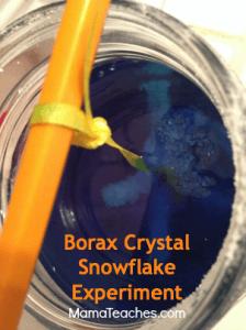 Borax Crystal Snowflake Experiment