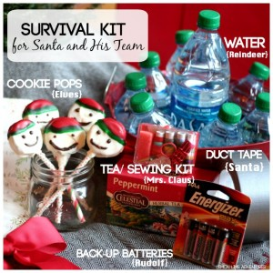 Survival Kit for Santa and His Team