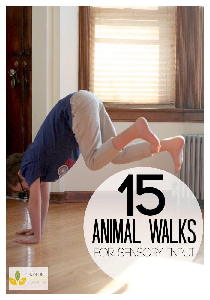 15 Animal Walks for Sensory Diet