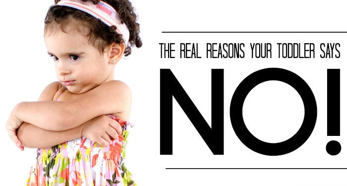 Toddler Says No