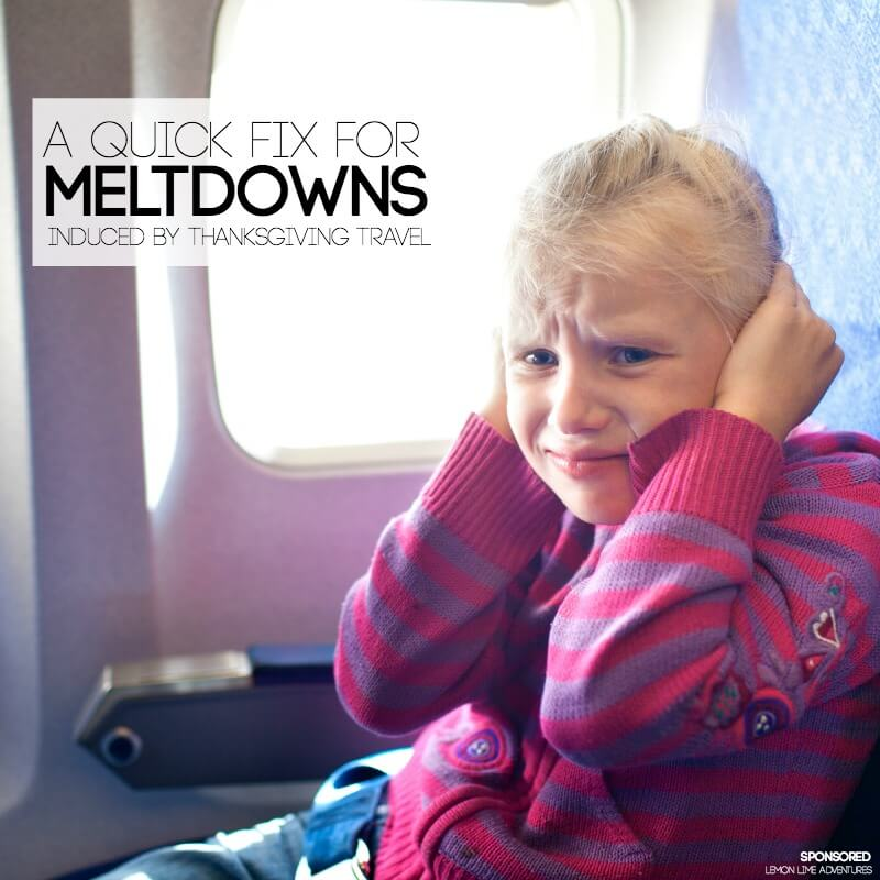 A Quick Fix for Meltdowns induced by Thanksgiving Travel
