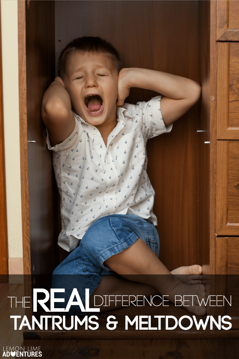 The Real Difference Between Tantrums and Meltdowns