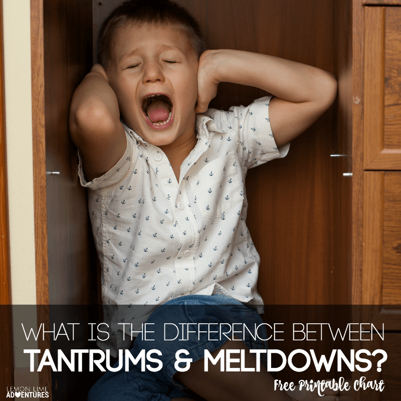 What is the Difference between Tantrums and Meltdowns