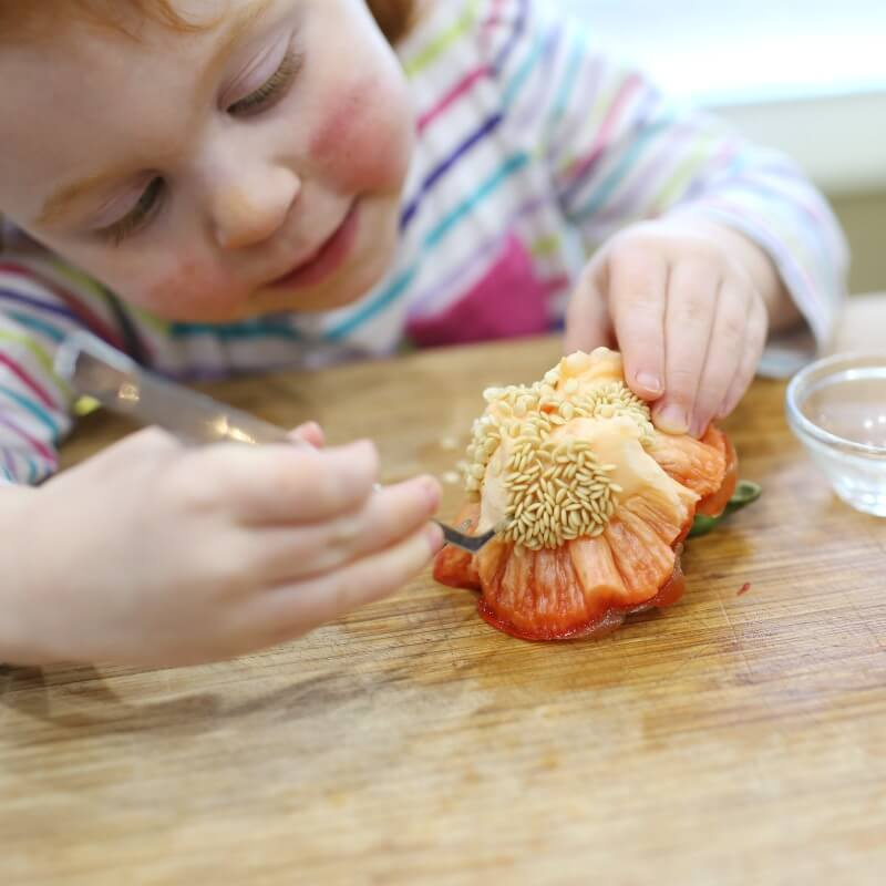 Investigating pepper seeds with toddler