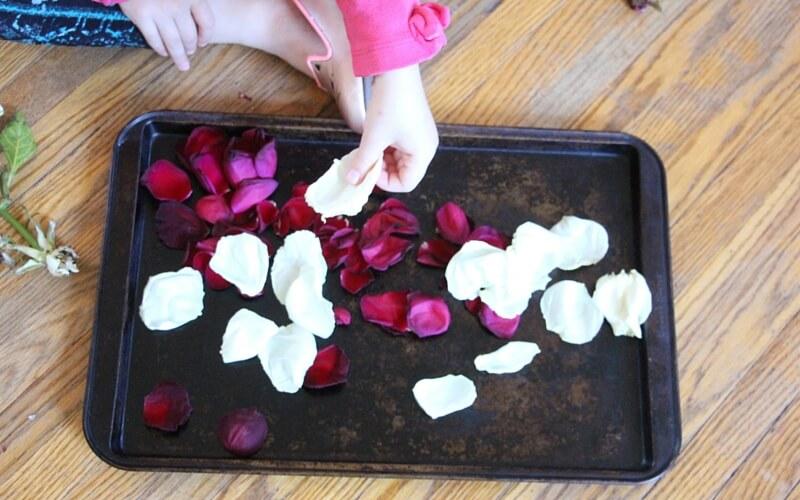 how to make sleeping beauty bath salts