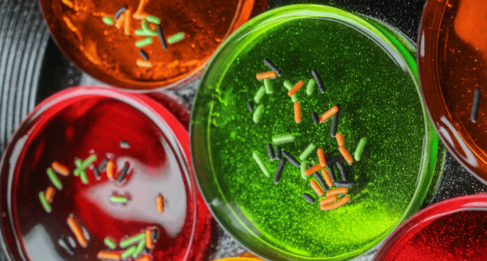 Super Creepy and Fun Petri Dish Jell-O