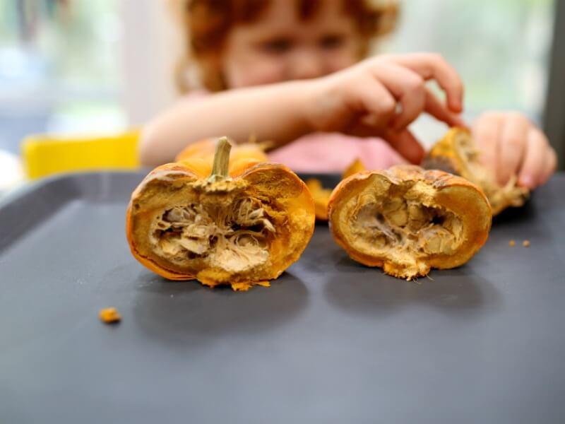 Disgusting Science for Kids