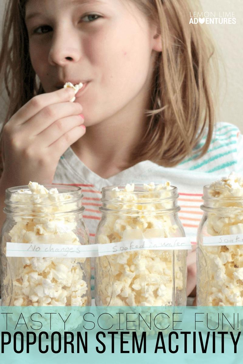 Popcorn Science STEM Investigation: Tasty Science Fun!