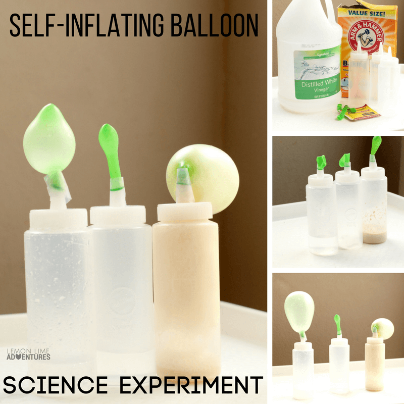 What chemical reaction blows up a balloon the most? This self-inflating balloon science experiment will help you answer that question.