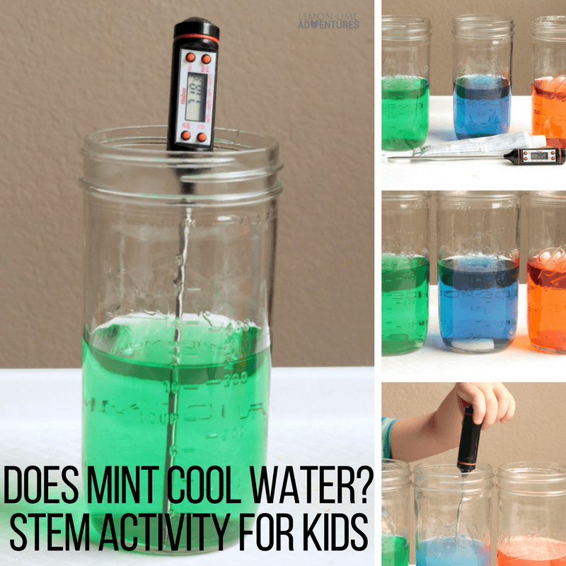 Ever wonder is mint actually cool? Find out in this fun hands-on STEM activity for kids that teaches the basics of scientific inquiry in a fun way!
