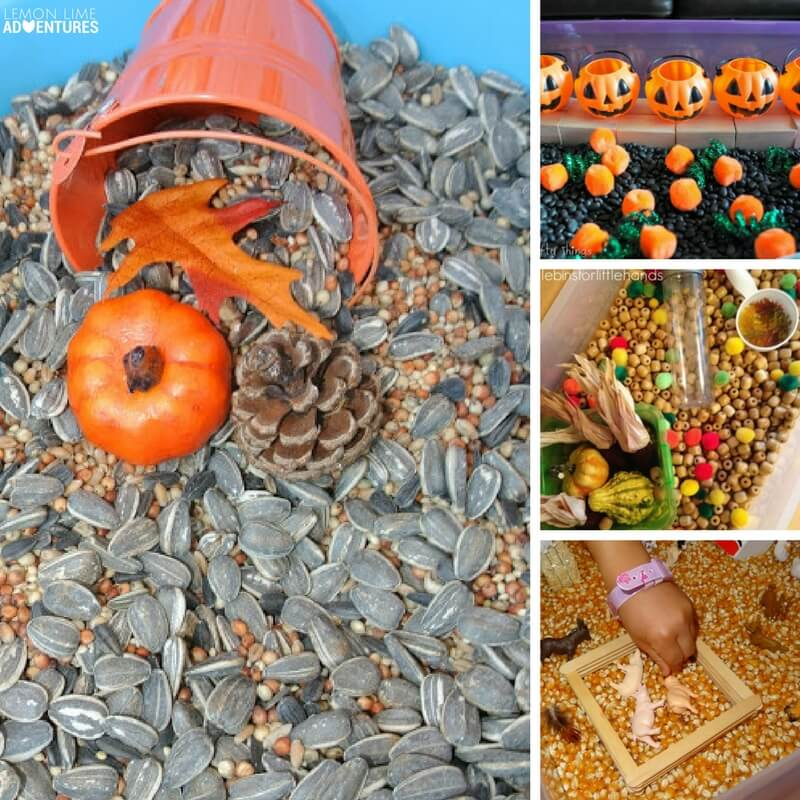 20 Totally Awesome Fall-Themed Sensory Bins for Kids!