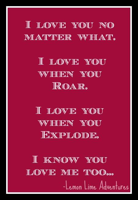 loving explosive children