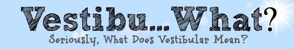 Vestbular Input What is that