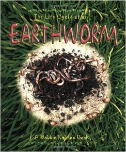 worm book for kids