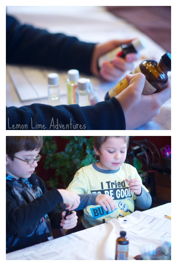 Matching scents experiment for kids