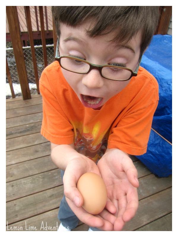 Successful Egg Drop Project