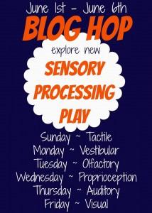 Sensory Play Hop