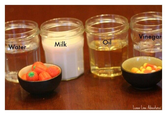 Dissolving Candy Pumpkins Experiment