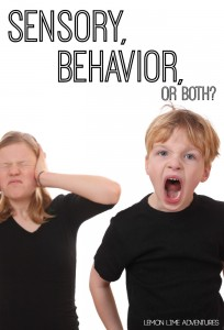 Is It Sensory Behavior or Both