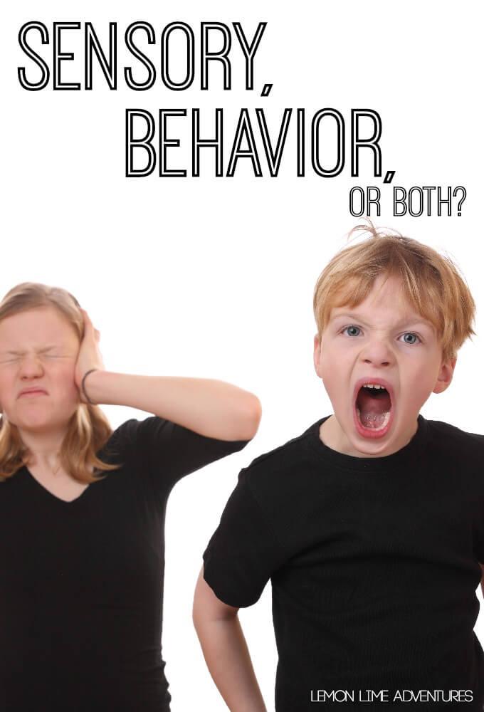 Is It Sensory Behavior or Both