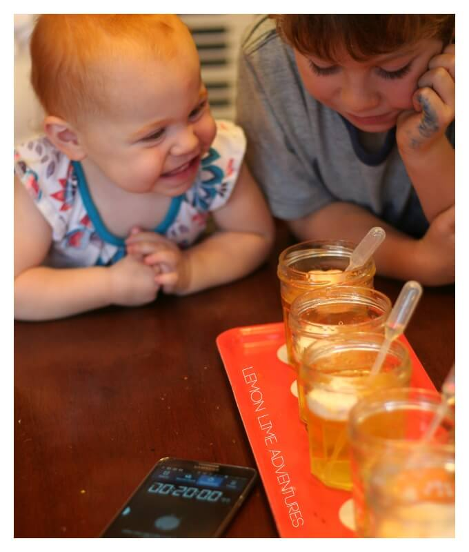Peeps Science Experiment with Toddlers