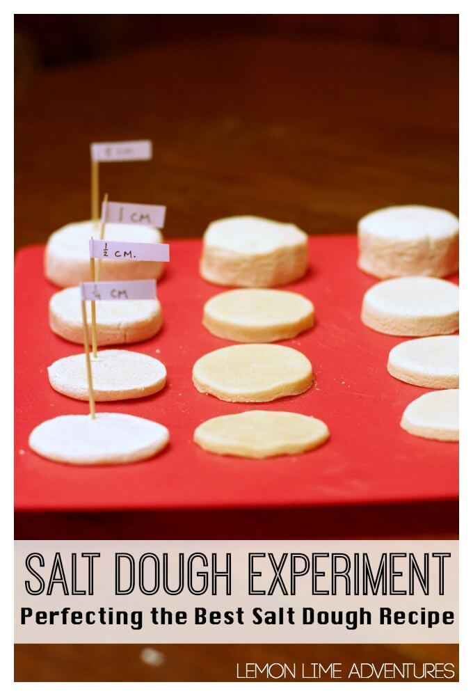 Best Salt Dough Experiment