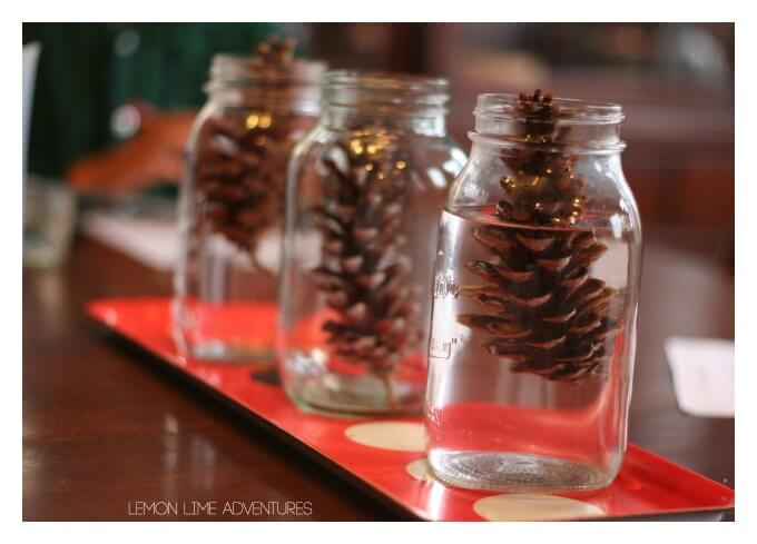 Fall Science Experiment for Kids with Pinecones