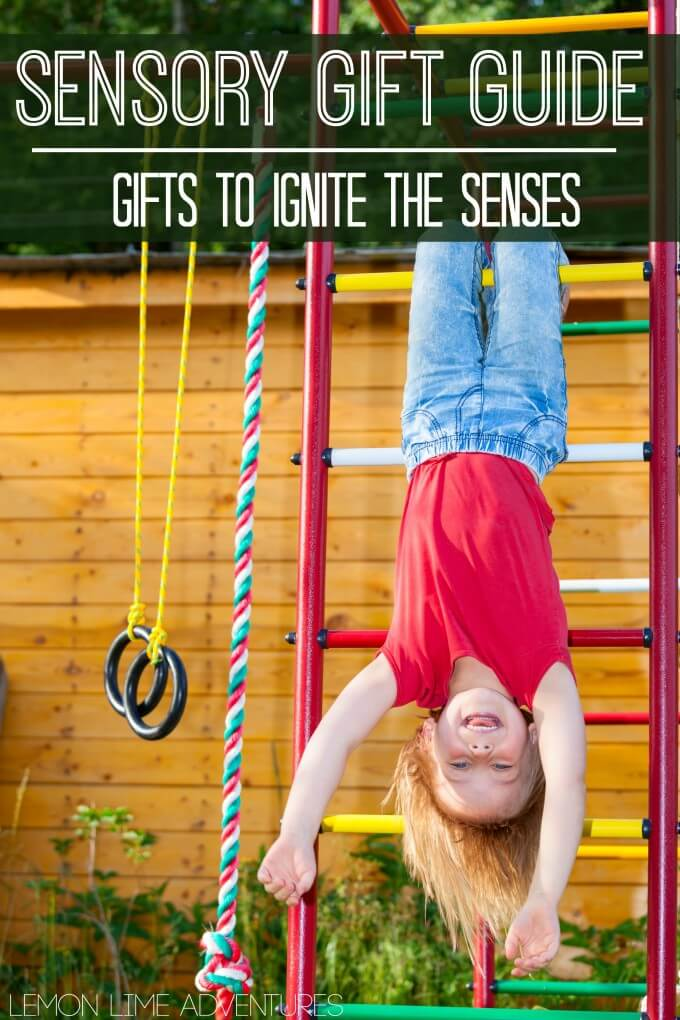 Sensory Processing Gift Guide