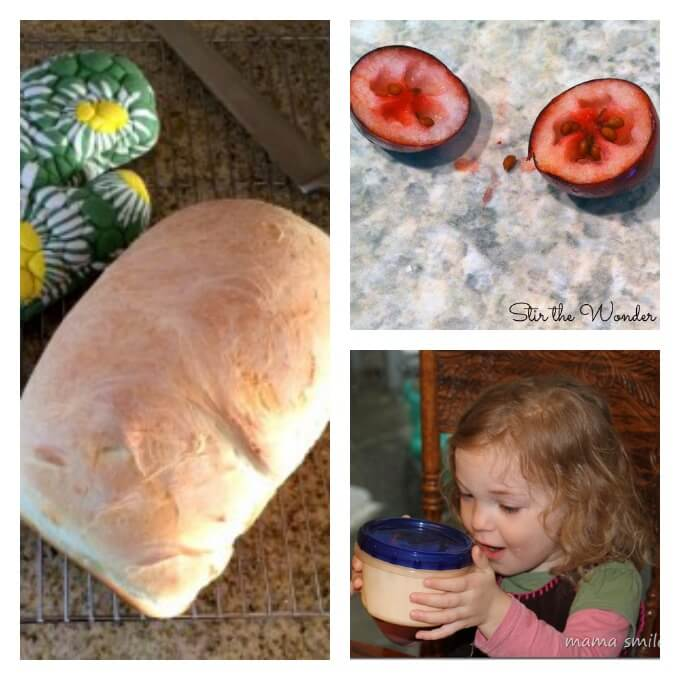 Winter Science with Food Items