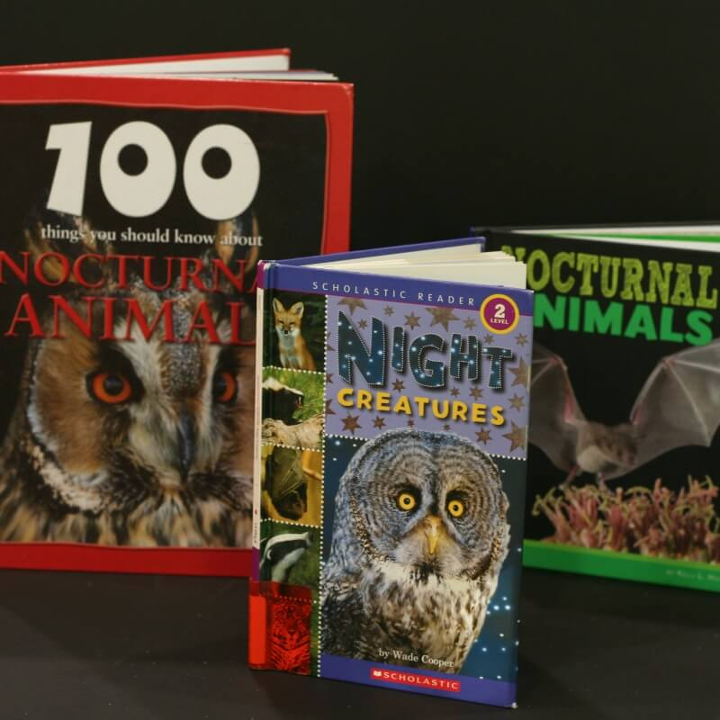 Nocturnal Animals Books