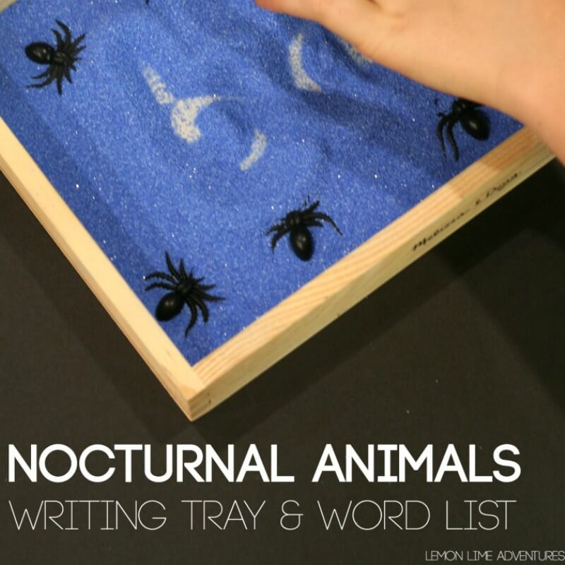 Nocturnal Animals Word Tray