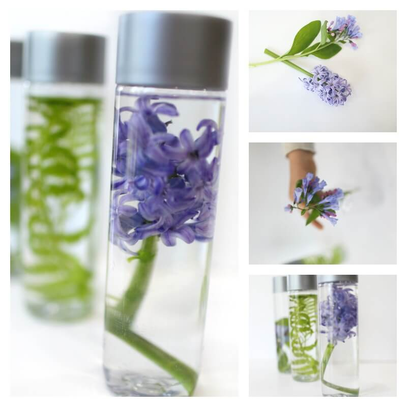 Spring Nature Sensory Bottles