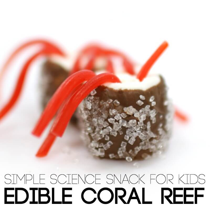 Live Edible Coral Reef