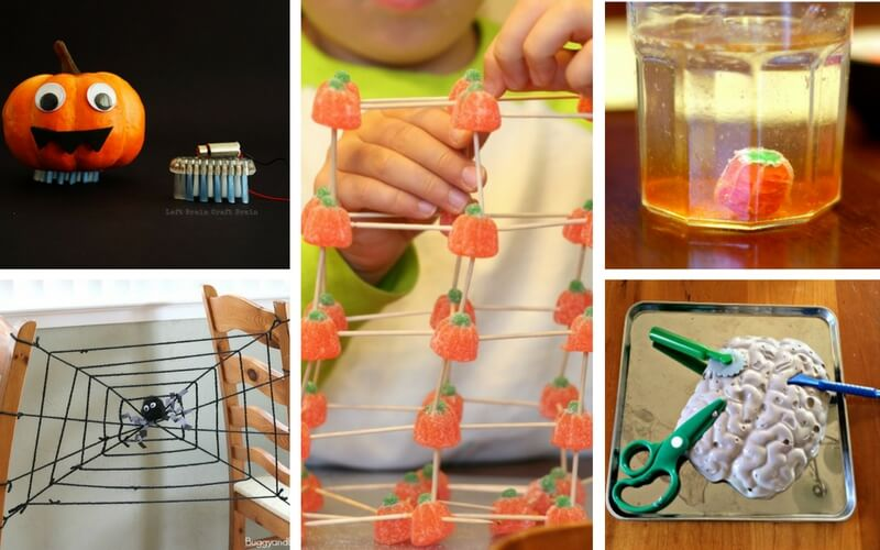 15 Must Try Fall STEM Projects for Kids