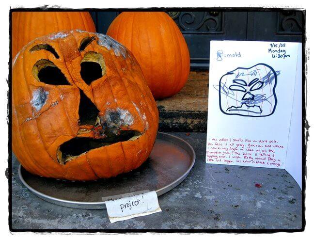 Rotting Pumpkin