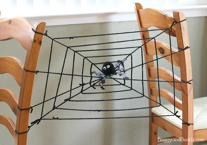 Spider web Vibrations