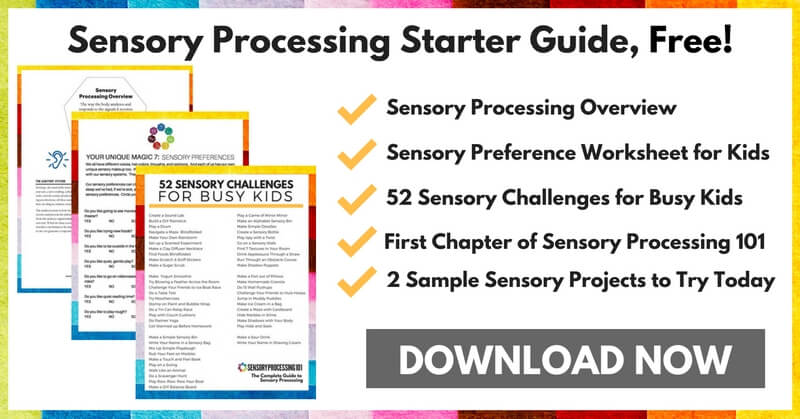 copy-of-sensory-processing-overview