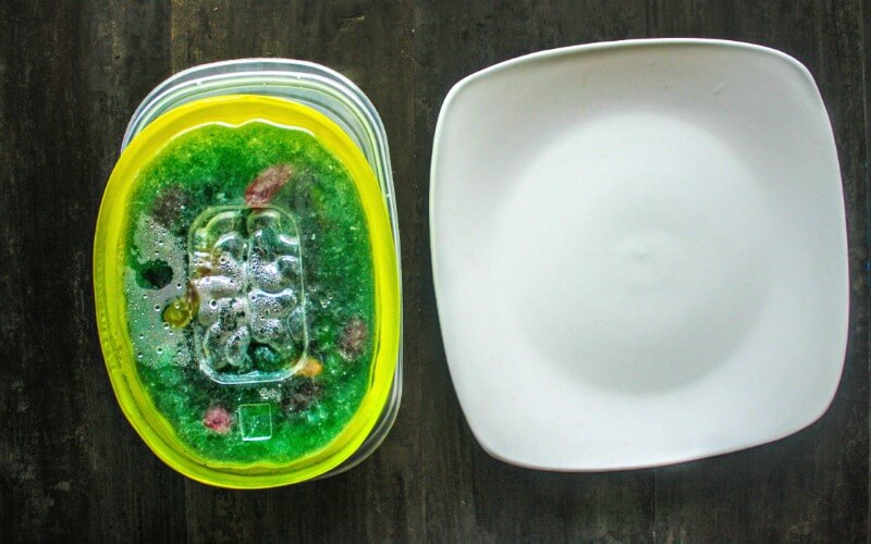 Ooey Gooey Jello Zombie Brains