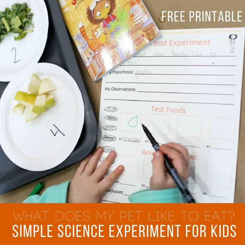 Simple Science Experiment for Kids