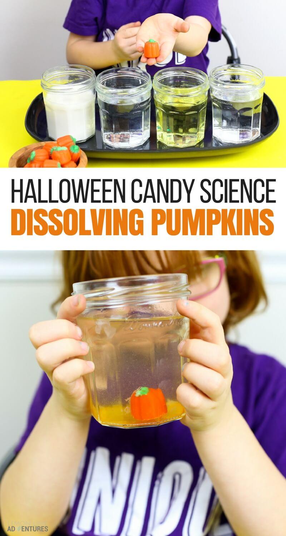 Dissolving Candy Pumpkins | Super Fun Halloween Science for Kids